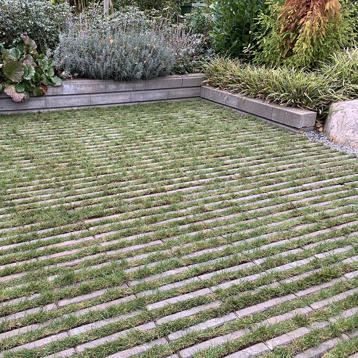 VitaLine græsarmering